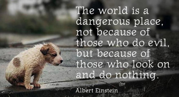 The-world-is-a-dangerous-place-not-because-of-those-who-do-evil-but-because-of-those-who-look-on-and-do-nothing-Quote-by-Albert-Einstein