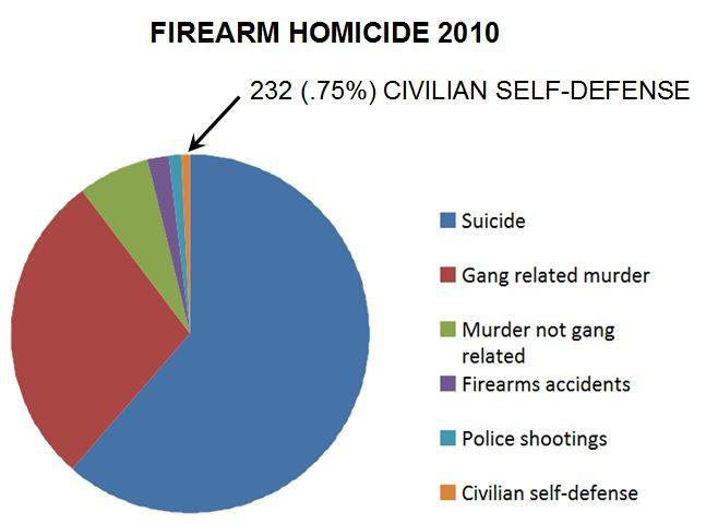 firearm homicide 2010