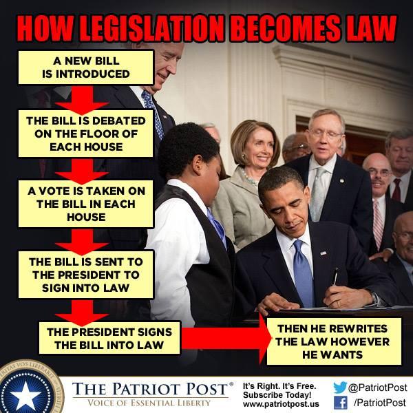 stupid gov 100
