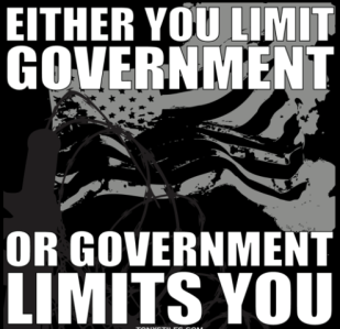 limit government